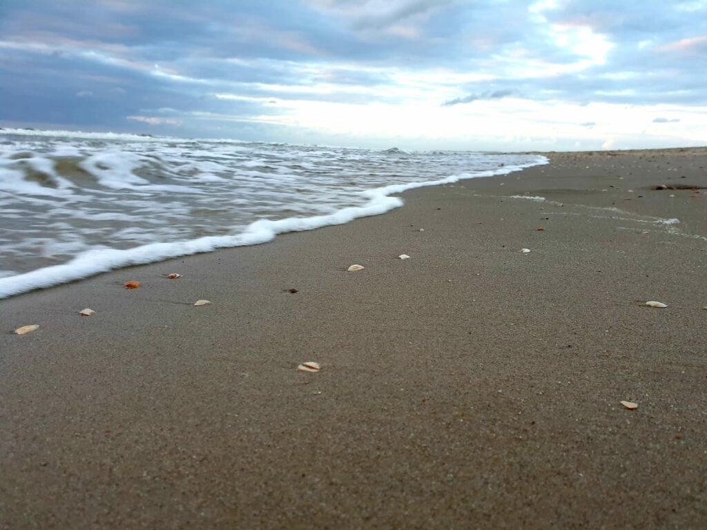 Strand Nordholland 28.07.2020