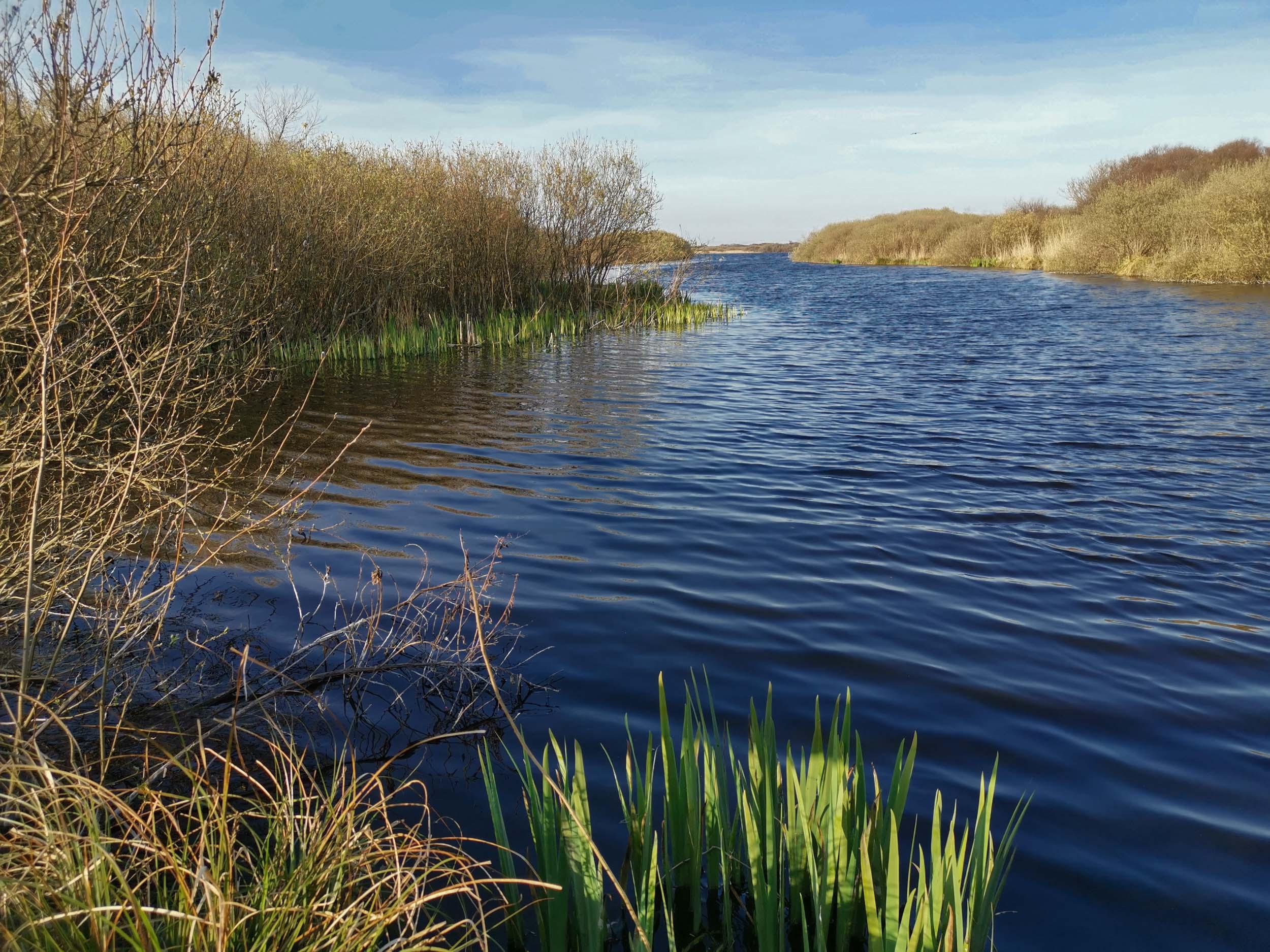 Het Zwanenwater - Naturschutzgebiet